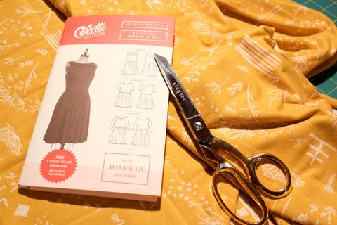 moneta-and-scissors